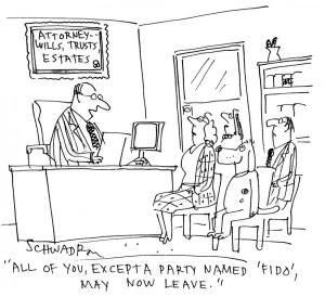 Probate Cartoon